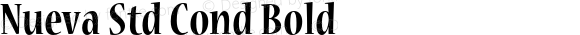 Nueva Std Cond Bold Version 2.056;PS 002.000;hotconv 1.0.57;makeotf.lib2.0.21895