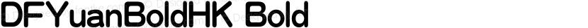 DFYuanBoldHK Bold Preview Image