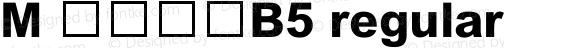 M 簡粗黑體B5 regular 2.30