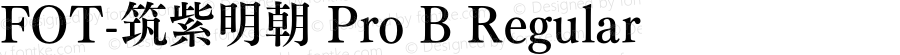 FOT-筑紫明朝 Pro B Regular Version 1.000;PS 1;hotconv 1.0.38;makeotf.lib1.6.5960