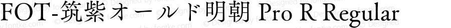 TsukuOldMinPro-R