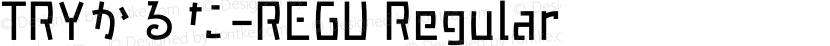 TRYかるた-REGU Regular Preview Image