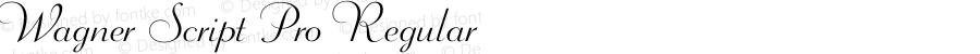Wagner Script Pro Regular 1.0
