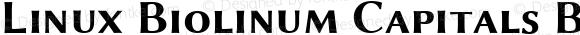 Linux Biolinum Capitals Bold Small Caps Version 0.9.2