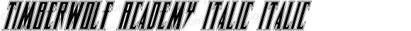 Timberwolf Academy Italic Italic 001.000