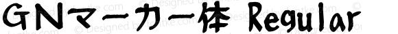 GNマーカー体 Regular 2.01(H15.3.19)