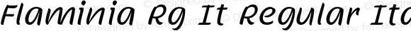 Flaminia Rg It Regular Italic