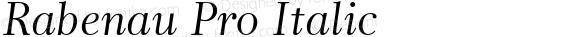 Rabenau Pro Italic
