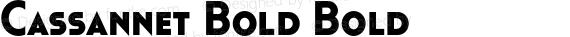 Cassannet Bold Bold preview image