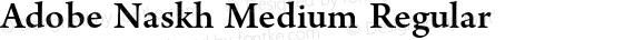 Adobe Naskh Medium Regular preview image