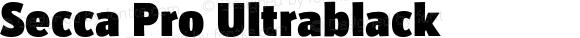 Secca Pro Ultrablack