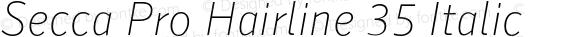 Secca Pro Hairline 35 Italic