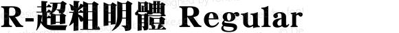 R-超粗明體 Regular Version 1.00