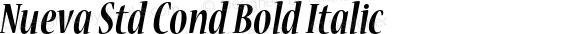 Nueva Std Cond Bold Italic Version 2.081;PS 002.000;hotconv 1.0.67;makeotf.lib2.5.33168