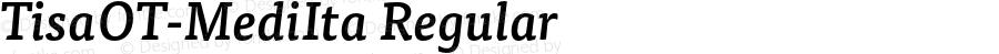 TisaOT-MediIta Regular Version 7.504; 2008; Build 1023