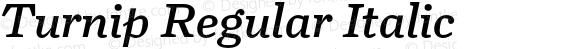 Turnip Regular Italic