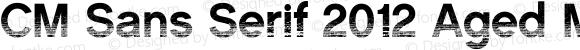 CM Sans Serif 2012 Aged Medium 001.000