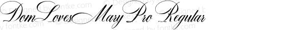 DomLovesMaryPro Regular preview image