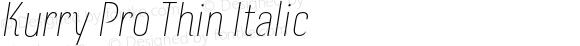 Kurry Pro Thin Italic