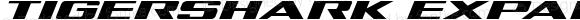 Tigershark Expanded Italic Expanded Italic Version 1.0; 2013