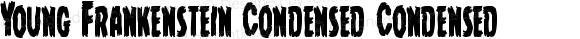 Young Frankenstein Condensed Condensed