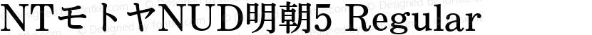 NTモトヤNUD明朝5 Regular Preview Image