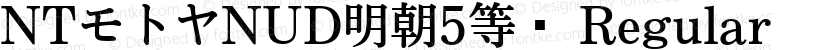NTモトヤNUD明朝5等幅 Regular Preview Image