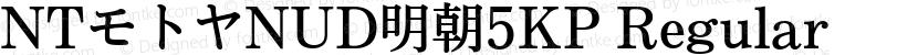 NTモトヤNUD明朝5KP Regular Preview Image