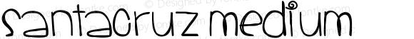 SantaCruz Medium Version 001.000