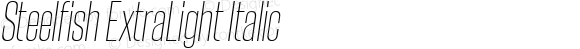 Steelfish ExtraLight Italic
