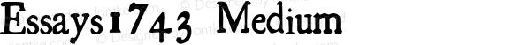 Essays1743 Medium