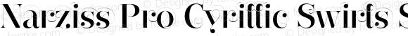 Narziss Pro Cyrillic Swirls SemiBold