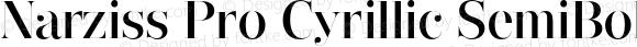 Narziss Pro Cyrillic SemiBold