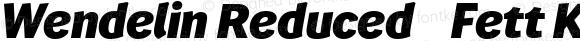 Wendelin Reduced 86 Fett Kursiv Version 5.023