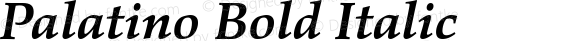 Palatino Bold Italic