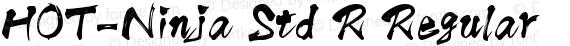 HOT-Ninja Std R Regular preview image