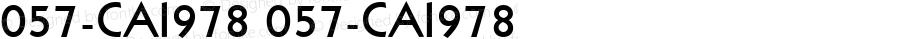 057-CAI978 057-CAI978 Version 3.0
