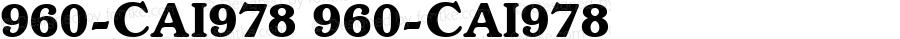 960-CAI978 960-CAI978 Version 3.0