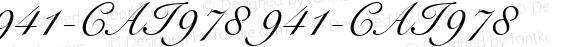 941-CAI978 941-CAI978 Version 3.0