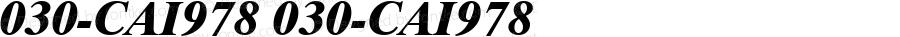 030-CAI978 030-CAI978 Version 3.0