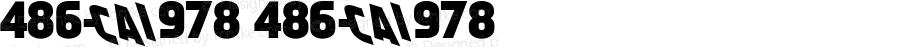 486-CAI978 486-CAI978 Version 3.0