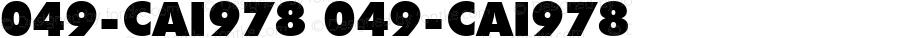 049-CAI978 049-CAI978 Version 3.0