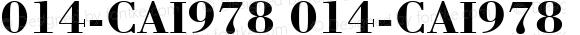 014-CAI978 014-CAI978 Version 3.0