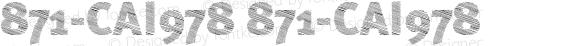 871-CAI978 871-CAI978