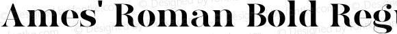 Ames' Roman Bold Regular Version 1.000;PS 001.000;hotconv 1.0.70;makeotf.lib2.5.58329