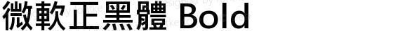 微軟正黑體 Bold preview image