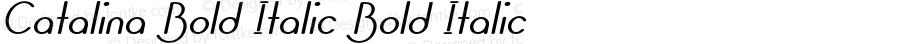 Catalina Bold Italic Bold Italic Version 1.000