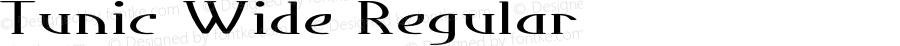 Tunic-ExtraexpandedRegular