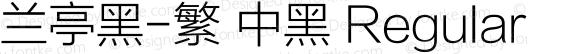 兰亭黑-繁 中黑 Regular 10.10d1