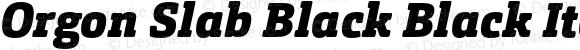 Orgon Slab Black Black Italic
